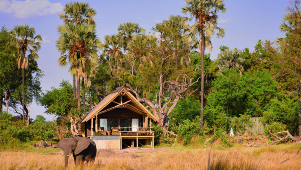 Introducing the Lodges and Tented Camps category